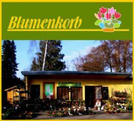 Blumenkorb Falkensee
